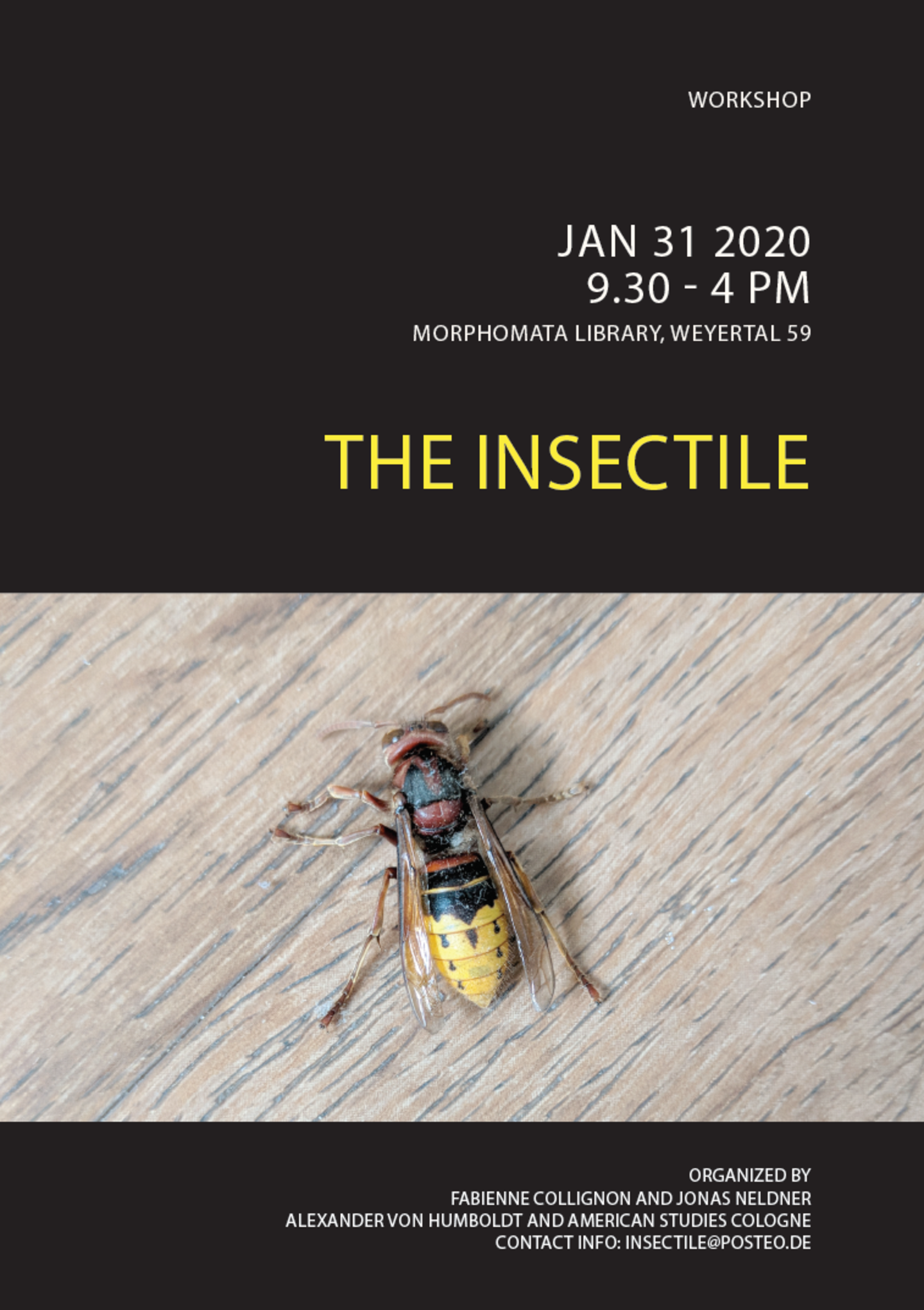 Poster for the Workshop: The Insectile